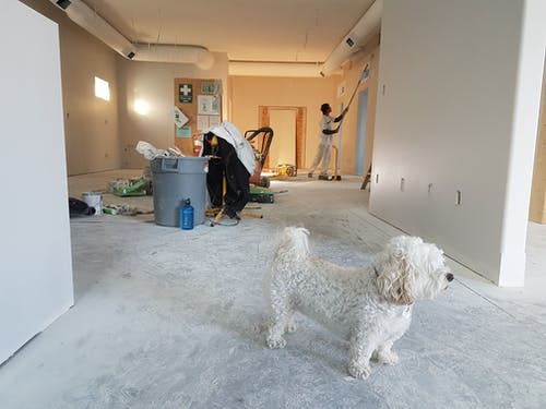 How Do You Find the Best Home Renovators?